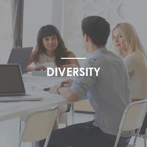2016_diversity_module.png